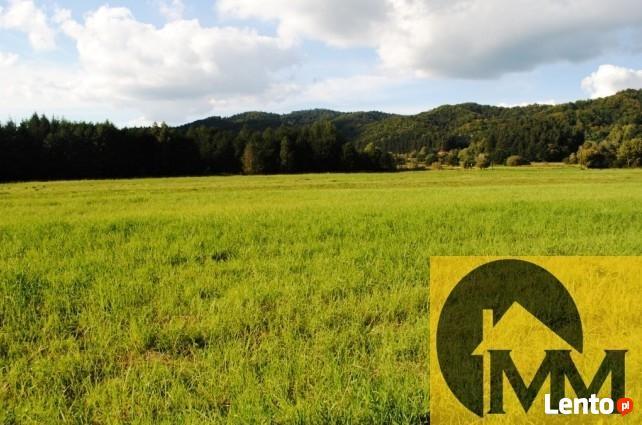 Działka rolna o pow. 63,11 ara, Bykowce, gm. Sanok