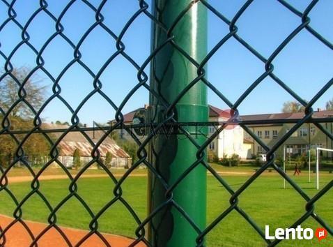 Siatka ogrodzenia 60x60x3,6mm h-150cm kolor zielony,czarny