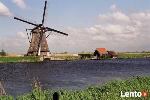 Busy Dobre Miasto Holandia i Niemcy ,2 kierowców,nowe busy!