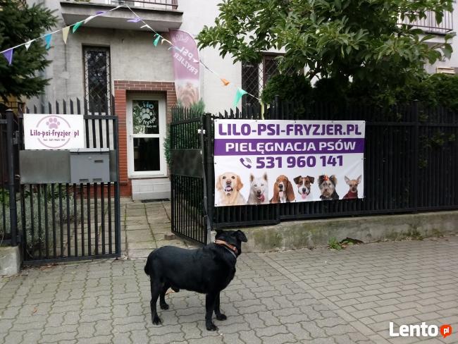 Lilo psi fryzjer - salon przy ul. Jórskiego zaprasza