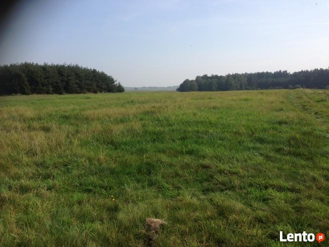 działka Siedlisk nr 1768/146 w Trachy k. Sosnicowice Gliwice