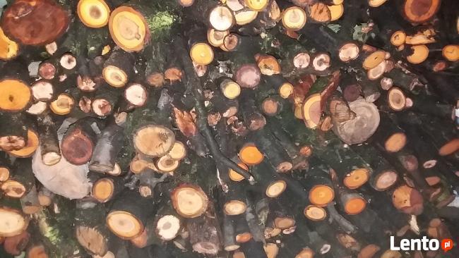 Drewno / Drzewo owocowe do wędzenia 1kg za 1zł