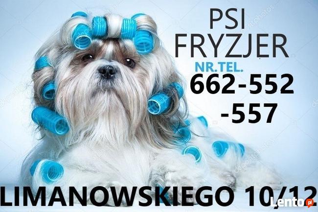 Strzyzenie psow, kotow, PSI fryzjer, DWORCOWA51