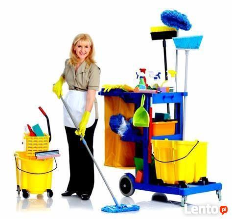 Od 7 do 11 odkurzanie, mycie podłóg, ścieranie stołów, półek