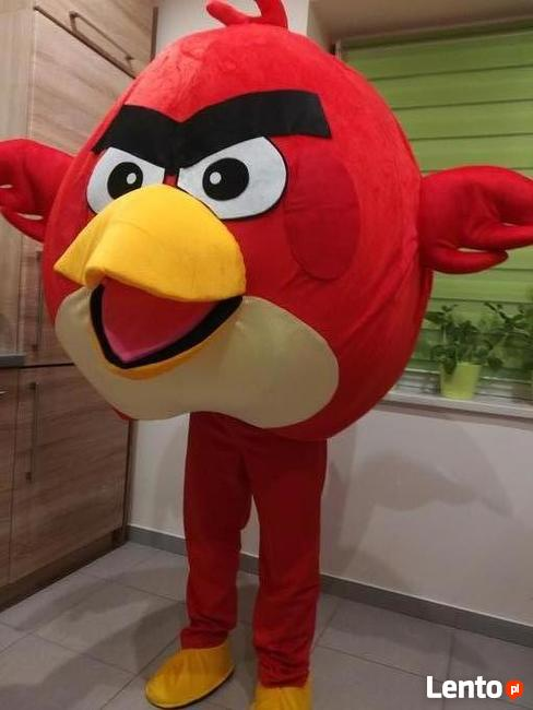ANGRY BIRDS chodząca żywa maskotka kostium strój reklamowy