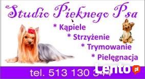 Psi fryzjer Grodzisk Mazowiecki,strzyżenie psów,