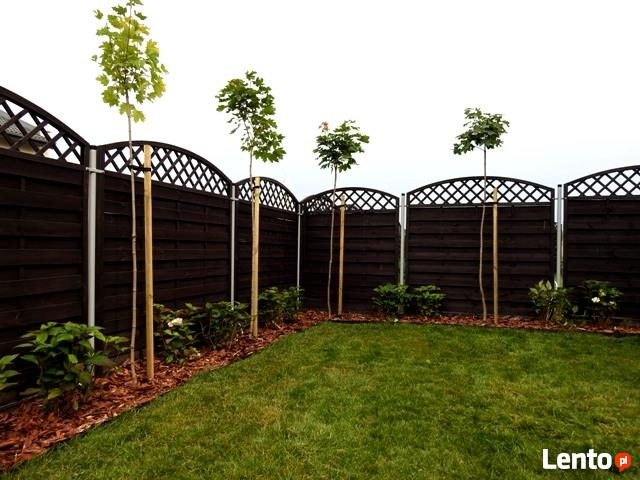 Projektowanie, aranżacja, pielęgnacja ogrodów.