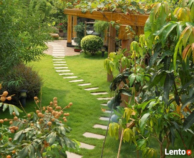 Profesjonalizm i zaangażowanie w budowaniu ogrodów
