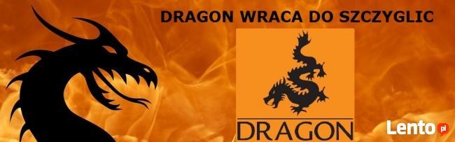 Lakier Dekoracyjny ZŁOTY ZŁOTOL 80 ml Dragon w Akro-Bud