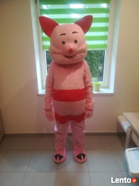 PROSIACZEK chodząca żywa maskotka duży pluszak kostium