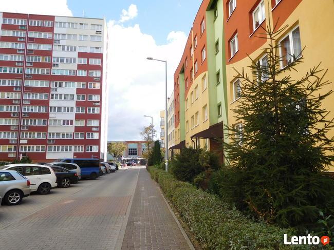 mieszkanie w centrum Lubina