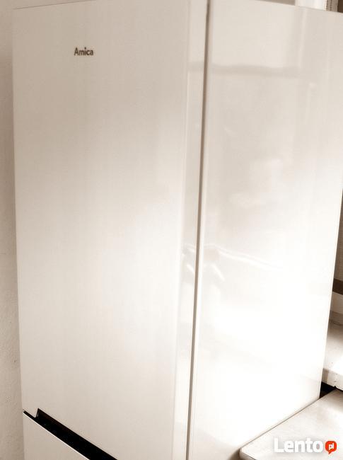 AMICA Lodówka ( wys.170 x szer.54 x gł. 59 cm) 550 PL