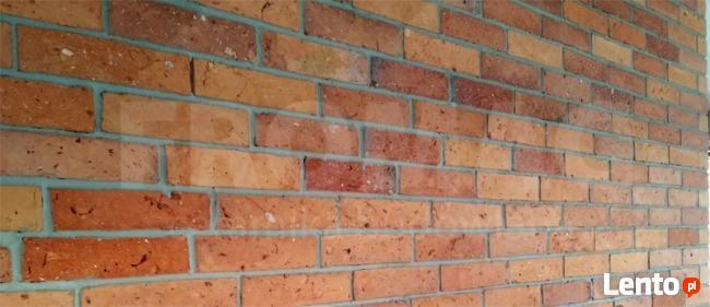 Cegła cięta środkowa Płytki z cegły gładkie FROMAG