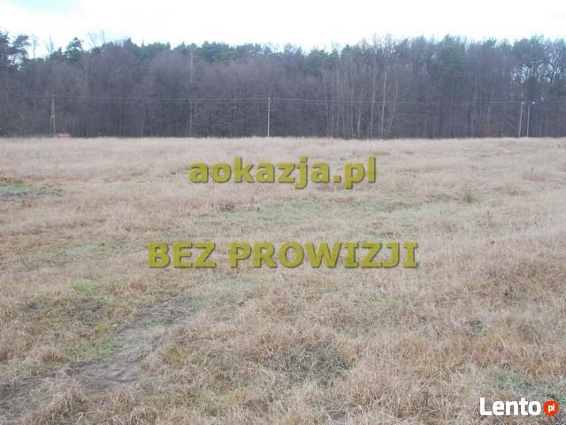 47ar działka rolna Skrzyszów k. Ostrów