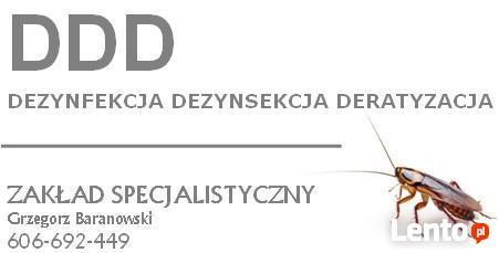 Dezynfekcja Dezynsekcja Deratyzacja - 606-692-449 opolskie