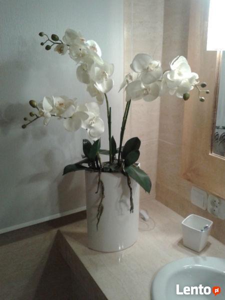 Ozdoba pokój kompozycja kwiat kwiaty jedyna szczególna warto