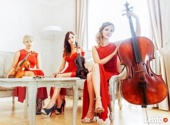 Wigilia firmowa, koncert kolęd - kwartet smyczkowy, trio