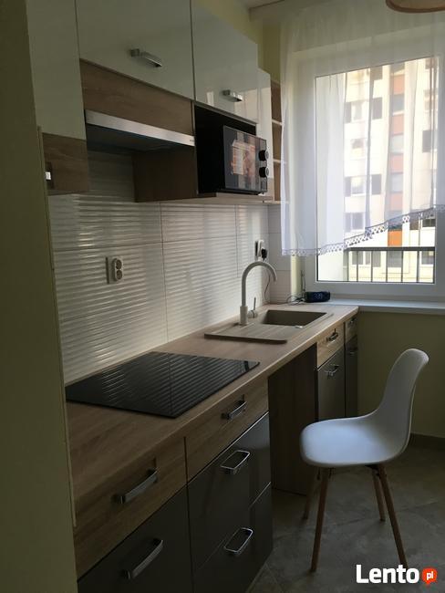 Nowe mieszkanie z dwoma pokojami wynajme