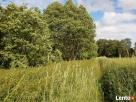 Działki 59 km od W-wy,na łąkach w Prabutach pow.Wyszków, Długosiodło