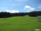 Pięknie położone działki w Stroniu Ślaskim Stronie Śląskie