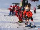 Ferie w Alpach-20/01-27/01/2018. Narty Snowboard - 6