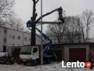 przycinanie gałęzi drzew i ścinanie drzew Warszawa Okolice - 2