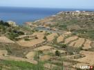 Malta - Angielski: wakacje na Malcie - kursy j. angielskiego - 6