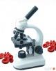 Monitoring Żywej Kropli Krwi Rzeszów