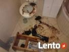 ™ Kompleksowe sprzątanie mieszkań po zmarłych,zgonie,VECTOR Łódź
