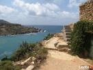Malta - Angielski: wakacje na Malcie - kursy j. angielskiego - 5