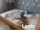 Sprzątanie miejsc śmierci,dezynfekcja mieszkań-Vector - 4