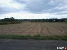Sprzedam działke rolną - 1