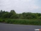 Działka rolna na sprzedaż Wilanów Powsin