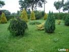 Dom z ogrodem oraz 3 ha gruntu. Żelazowa Wola, Sochaczewski - 2