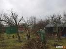 Usługi wycinania drzew-wywóz gałęzi-sprzątanie ogrodów Lublin