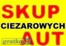 UWAGA!!! SKUPUJEMY AUTA CIĘŻAROWE I NACZEPY ZA GOTÓWKĘ,  Nowa Wieś Lęborska