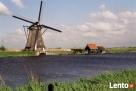 Busy do Holandii z Olsztyna i okolic z adresu pod adres - 5