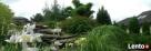 BioArt pielęgnacja roślin w ogrodzie i w firmie Lubelskie Lublin
