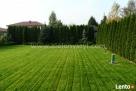Projektowanie ogrodów, zakładanie ogrodów, tarasy drewniane - 6