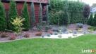 OGRODY-Zakładanie Ogrodów-Trawników - 7