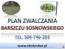 Program usuwania barszczu Sosnowskiego, plan walki Gmina