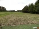 Sprzedam dzialki rekreacyino - rolne i budowlane - 3