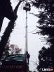 Wycinka i przycinka drzew podnośnikiem koszowym tel516327016 Sulejówek