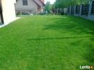 Nawadnienie trawników, systemy nawadnbiające, trawniki Tarnów