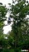 Spalinowy Rębak gałęzi, rozdrabniarka Makita, cięcie,wycinka - 1