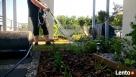 Z pasją zadbamy o Twój ogród - 3