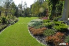 Projektowanie ogrodów, zakładanie ogrodów, tarasy z drewna