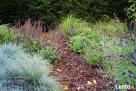 Projektowanie, pielęgnacja, aranżacja ogrodów - 2