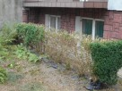 Usługi ogrodnicze i porządkowe działek placów posesji - 5