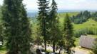 Stanleyówka  w górach nad jeziorem czorsztyn białka 10km - 4